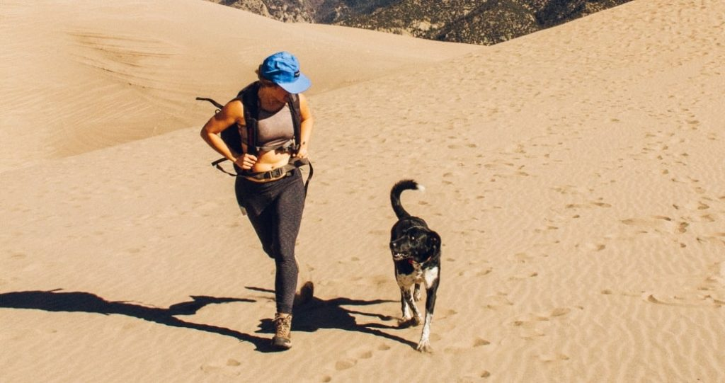 22 Tips and Best Gear for Running with Your Dog