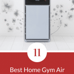 Top 11 Best Home Gym Air Purifiers